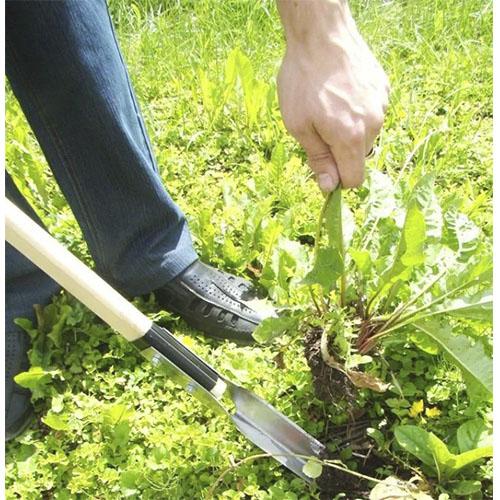 лопатка за корени